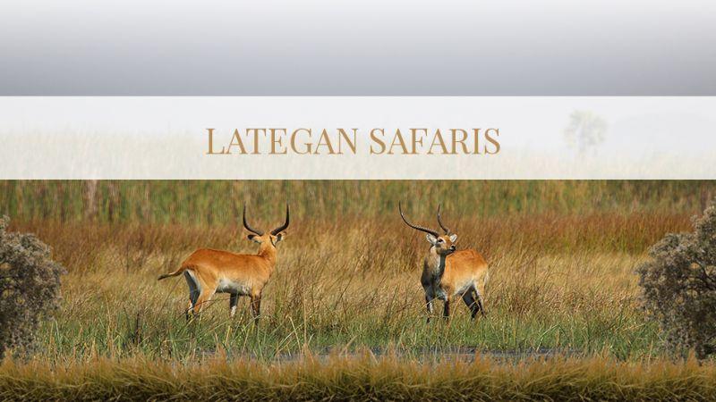 Lategan Safaris WordPress Website